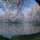 Народные приметы о погоде подсказывают дачнику – 11-20 мая