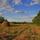 Народные приметы о погоде подсказывают дачнику – 21-31 июля