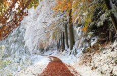 Народные приметы о погоде подсказывают дачнику — 21 — 30 ноября
