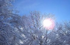 Народные приметы о погоде подсказывают дачнику – 21 – 31 декабря