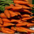 Способы хранения свежих овощей при комнатной температуре