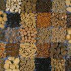 Обрабатываем семена для повышения урожайности