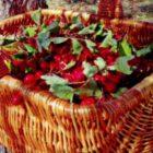 Что можно приготовить из боярышника на зиму