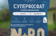 О пользе фосфорных удобрений для растений