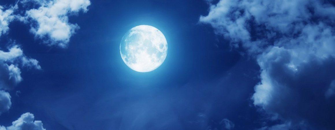 Астрологи о влиянии Луны на растения – рекомендации лунного посевного календаря