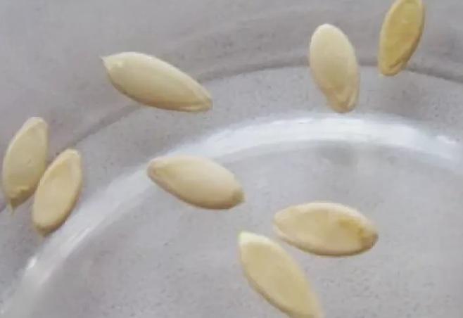 Семена помещаем в воду