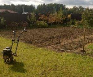 Подготовка почвы для посадки свеклы