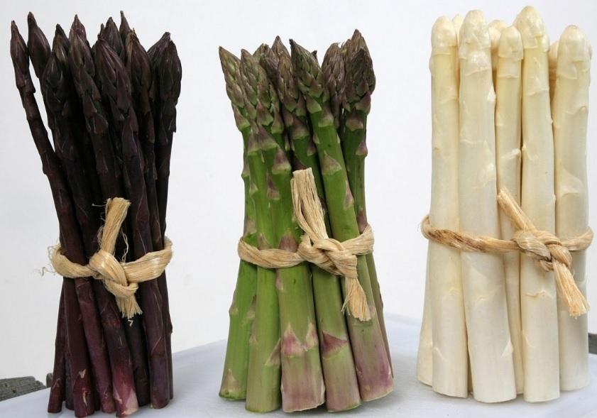 Разновидности овощной спаржи